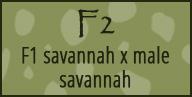 f2 savannah